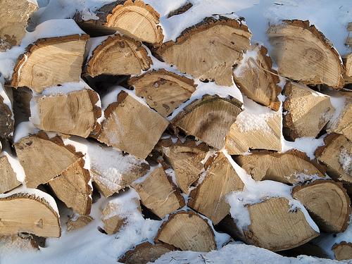 Wintery wood pile