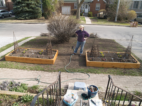 Planting raised beds