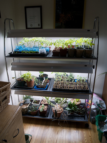 New grow lights