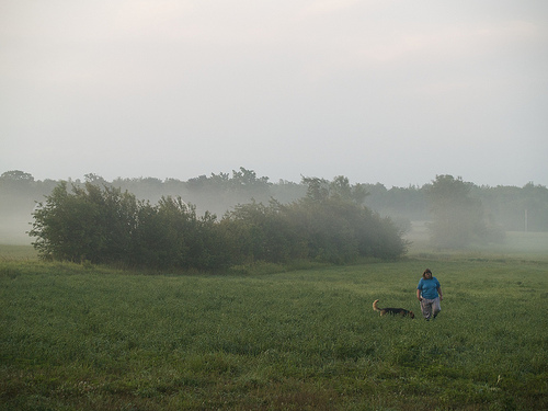5-Day Ride - misty morning