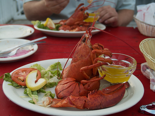 Lobster Supper!
