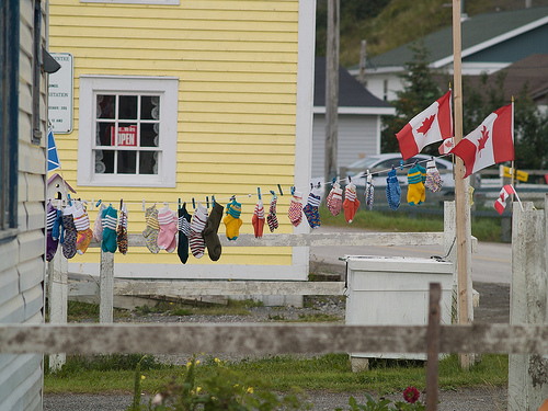 Socks for Sale in Trout River