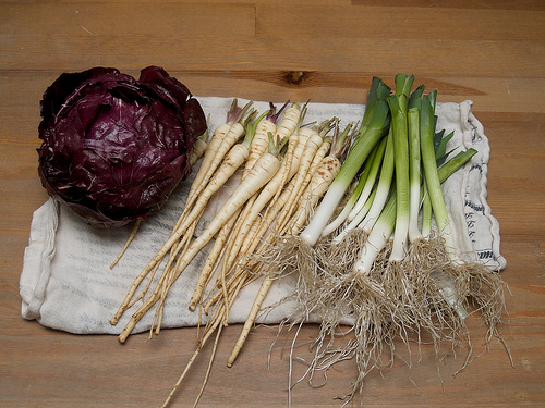 Radicchio, parsnips and leeks from my garden