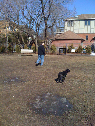 Chris & Luna at Ledbury Dog Park