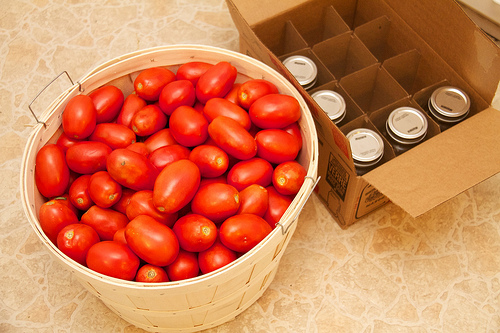 Bushel of tomatoes