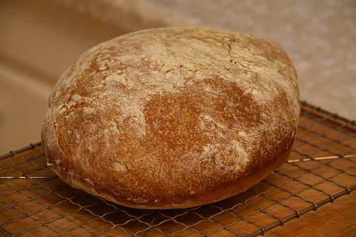 A loaf of not-so-sour bread
