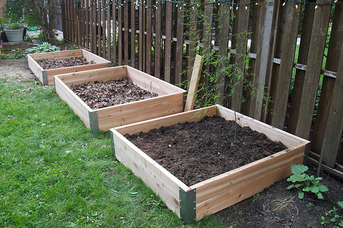Three new raised beds, awaiting dirt