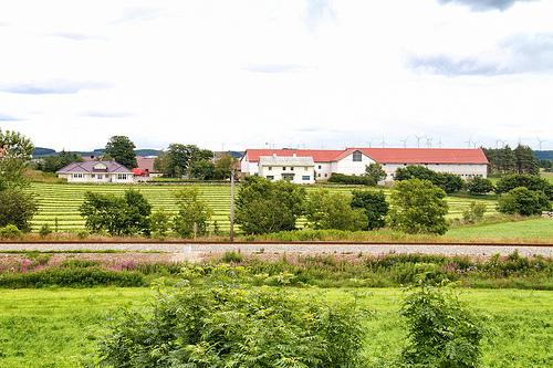 Nils's farm in Jæren