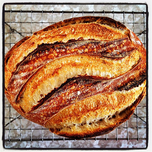 Sourdough bread made with Arva flour